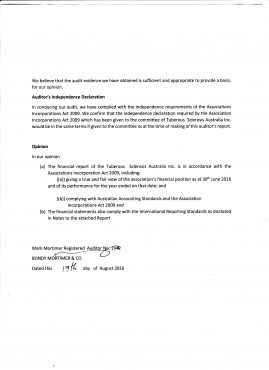 TSA Audit Report Page 2