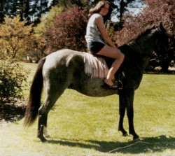 A young Rosemary McDonald riding a horse