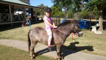 Our special girl Taylah is 6yo and has The....she just started.in prep and loving it.. We were blessed to have successful brain surgery at 2yo.. She loves her animals totally and is the love of our life xxx ‪#‎IAMTSC‬.... Xxx